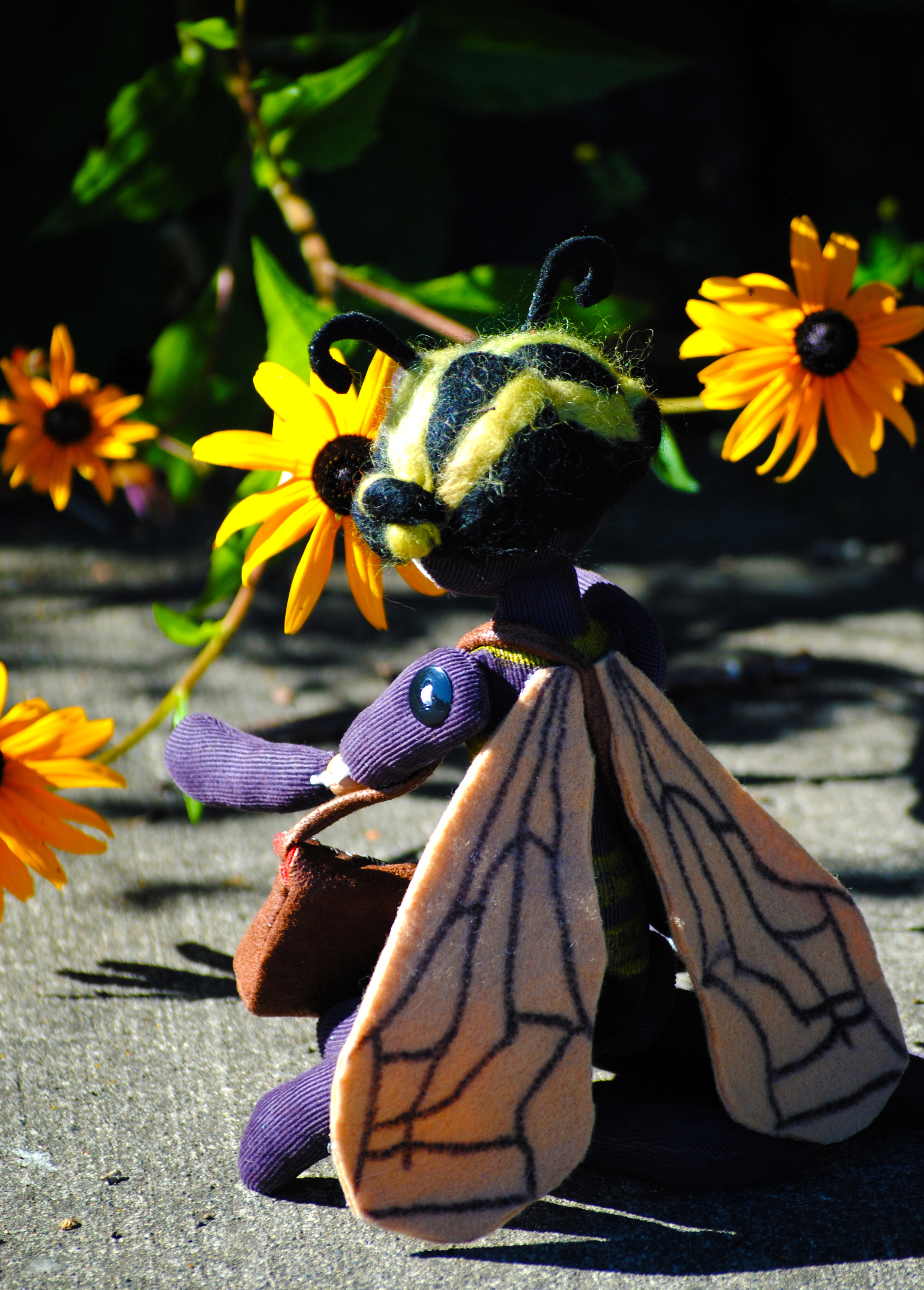 Poppy Beas Traveler 2 219.JPG