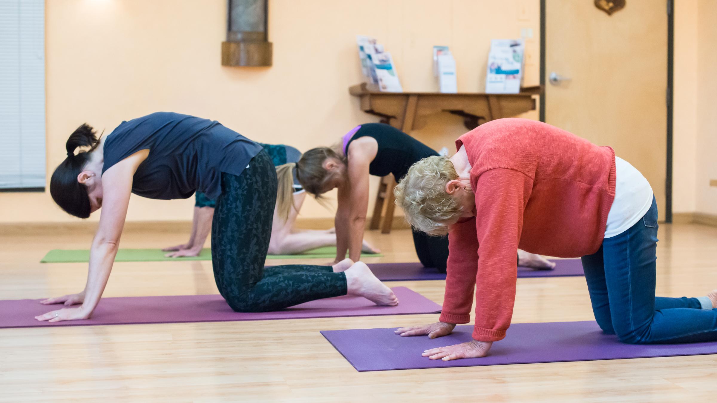 SHPT_yoga_3.jpg