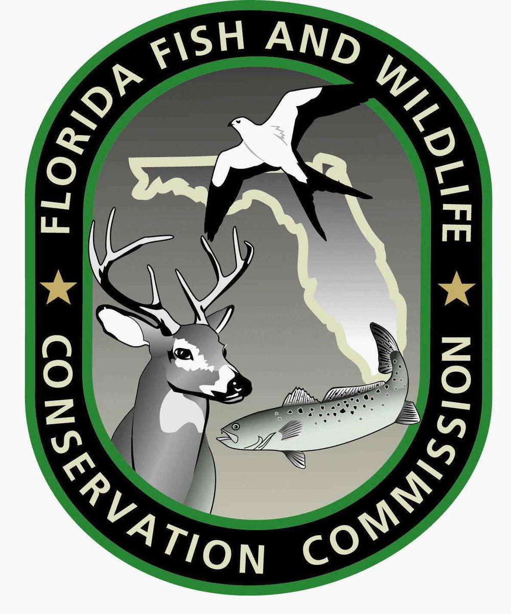 fwc-logo.jpg