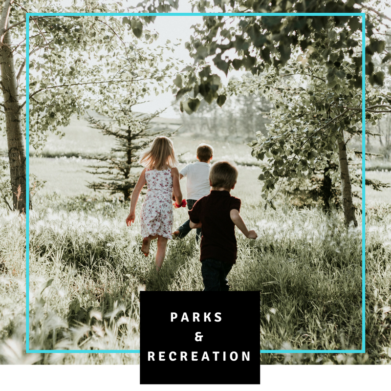 Parks and Recreation Background Checks CPRA