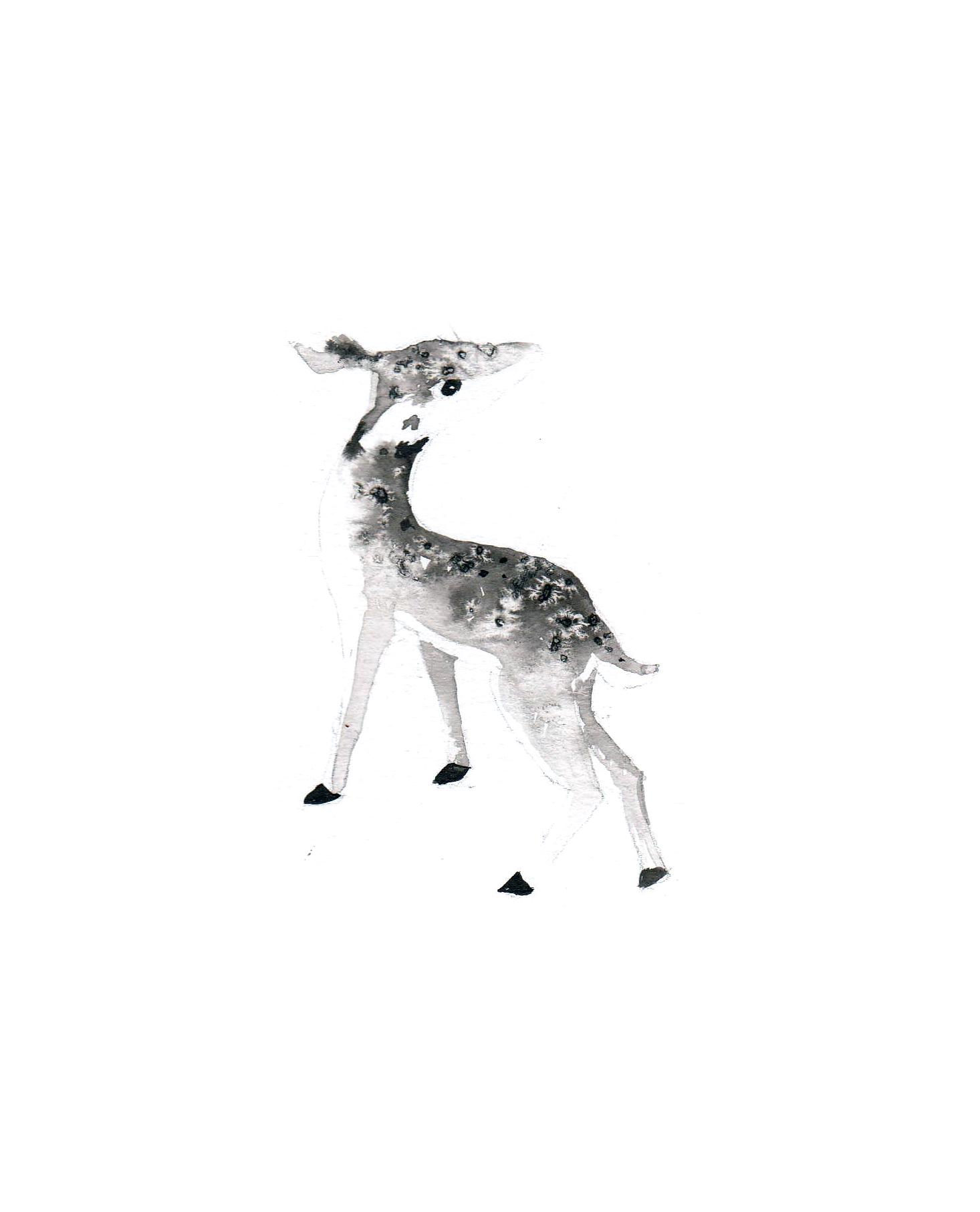 deer website.jpg