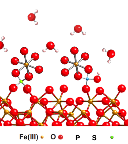 Schematic showing an example of ternary complexes between Fe(II) and phosphate/sulfate on a hematite surface
