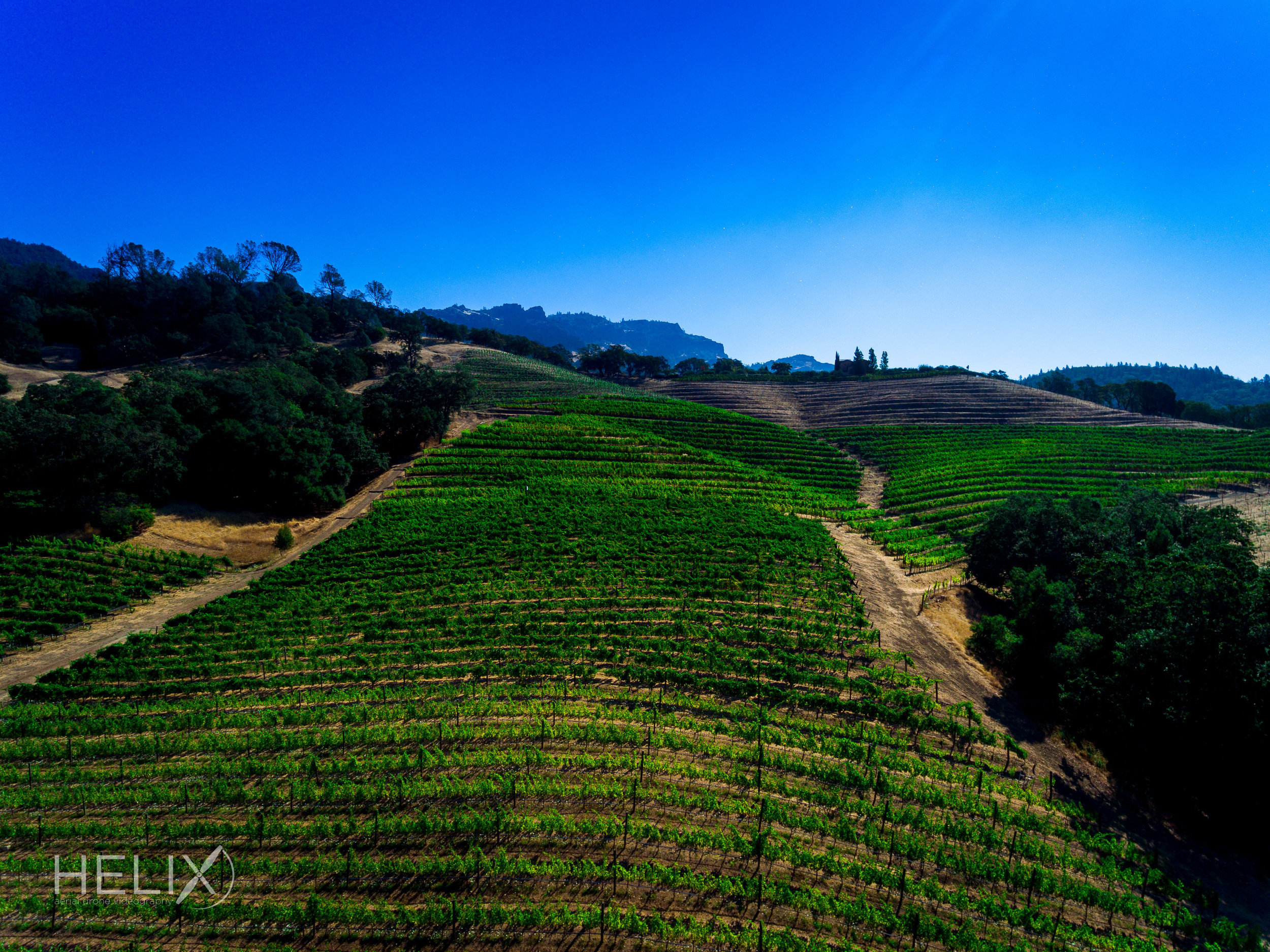 HELIX - Jerico Canyon Winery 090516-8.jpg