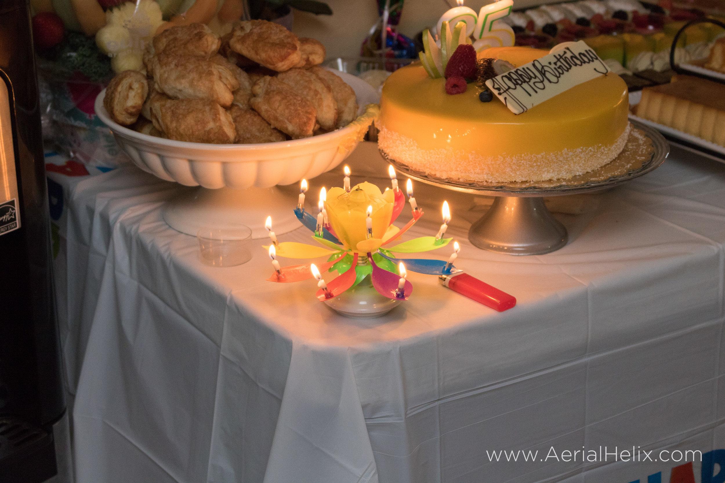 HELIX - Grandmas Bday - Drone Operator Orange County-87.jpg