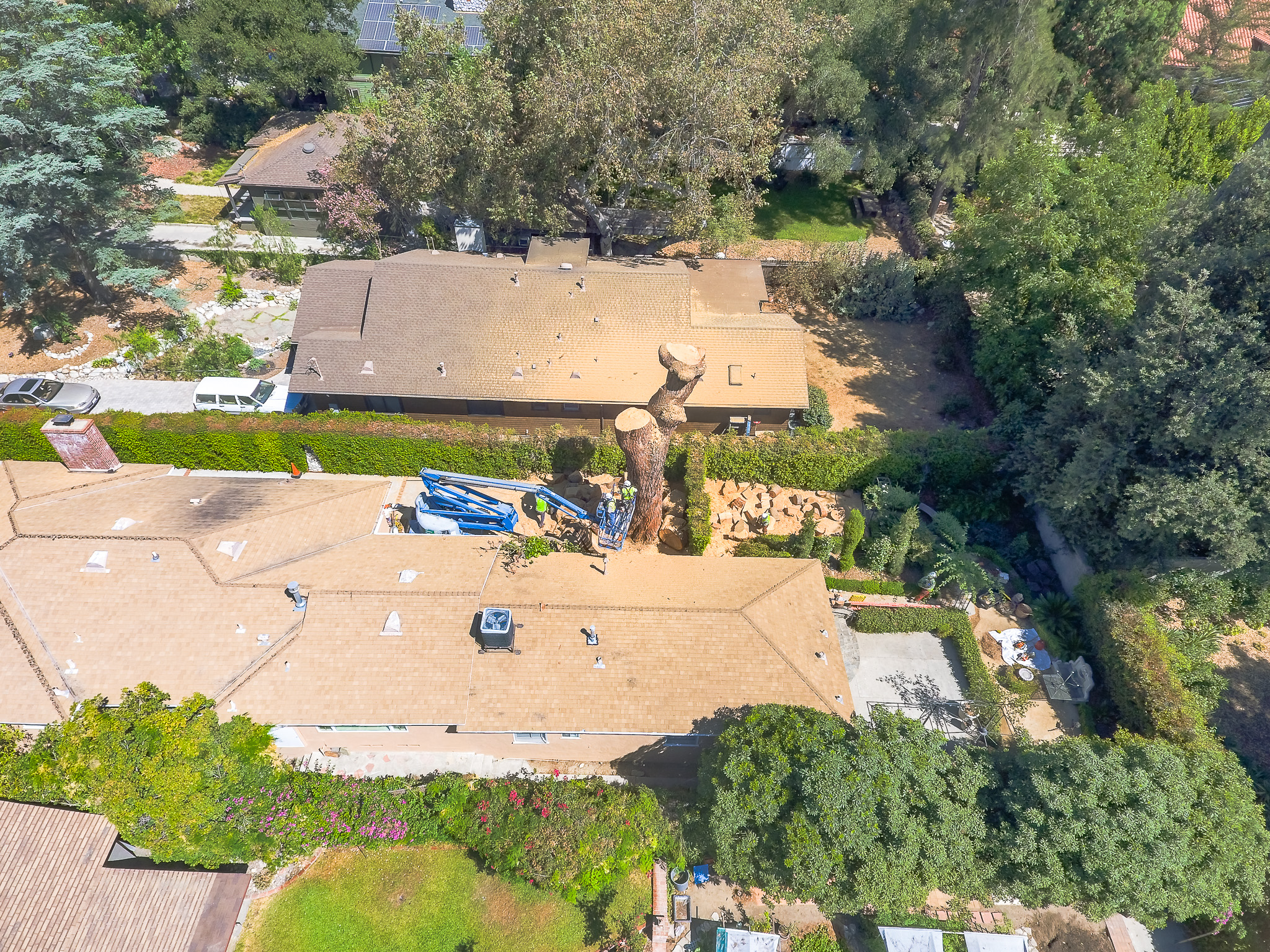 Mariposa Tree Removal Aerial 3-35.jpg