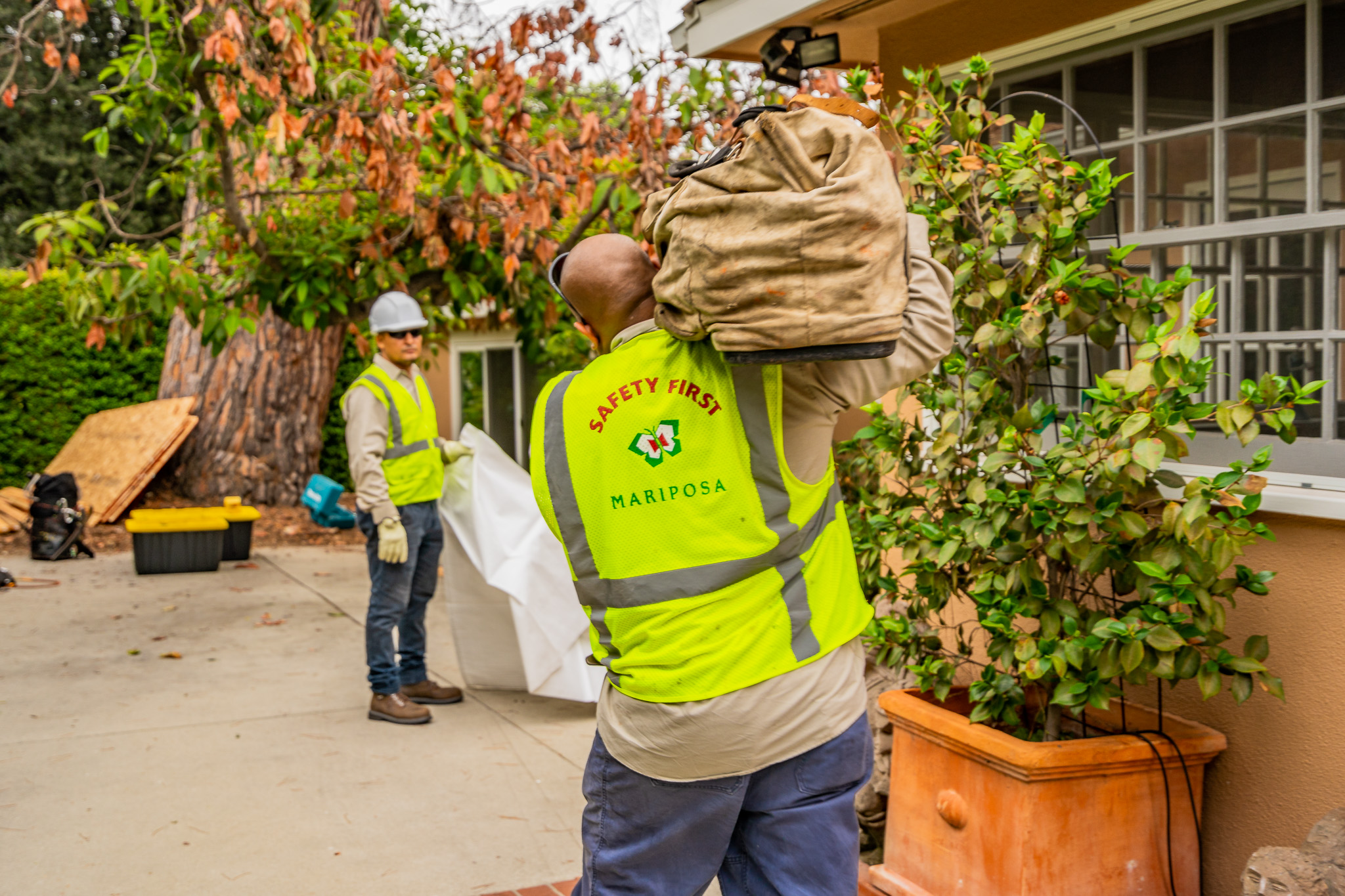 Mariposa Tree Removal Ground-25.jpg