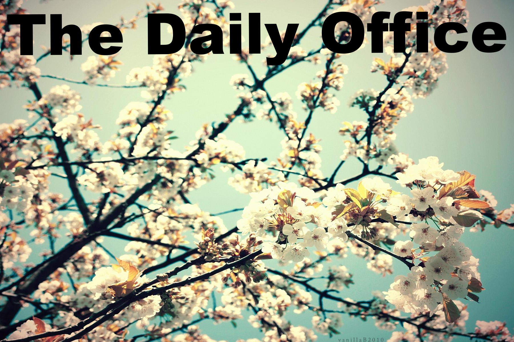 The Daily Office .The Daily Office is presented by the Mission of St. Claire on this web site in various formats for your personal devotions. The formats include downloadable versions for handheld personal information devices.