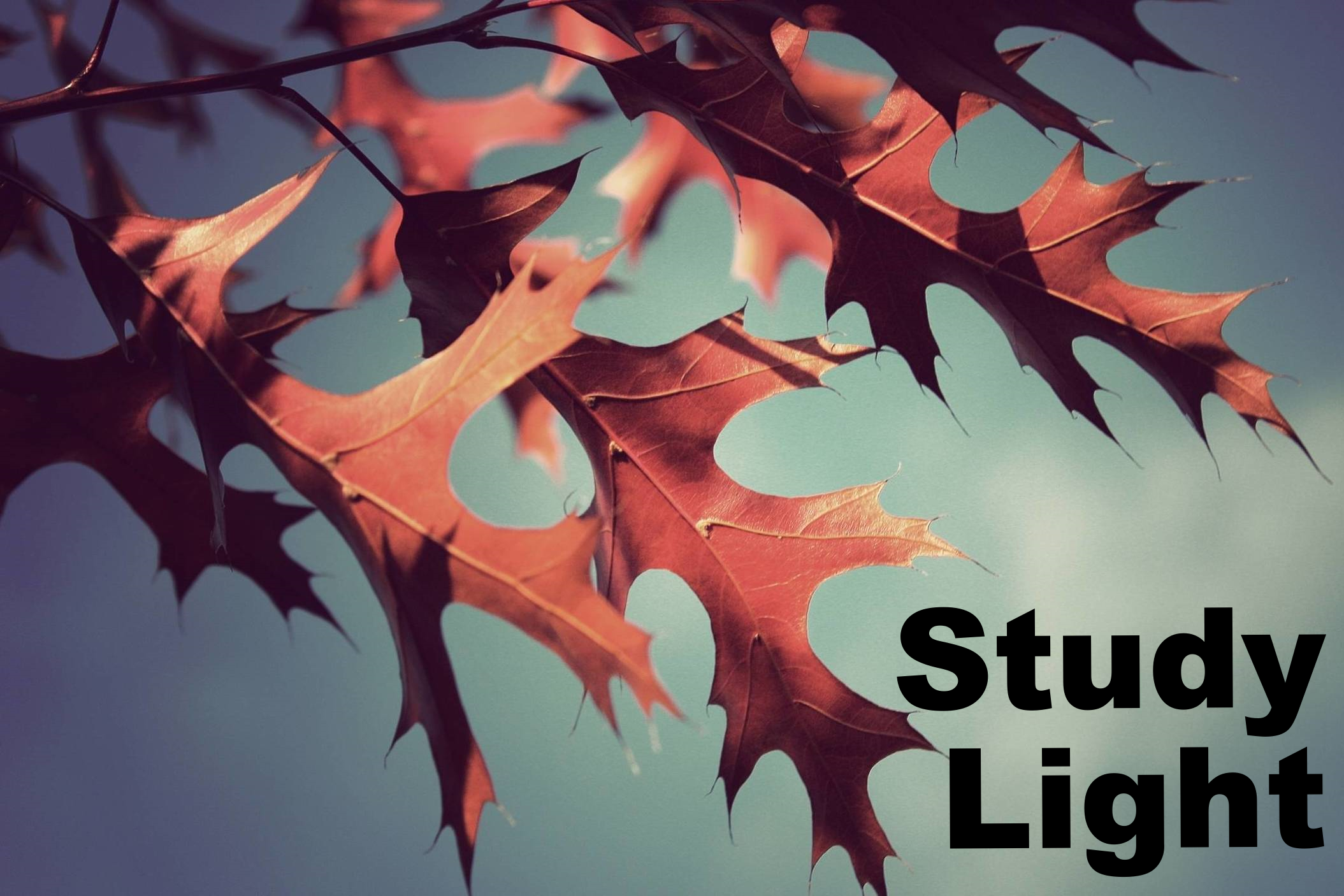 StudyLight.org is an excellent collection of online Bible study resources.