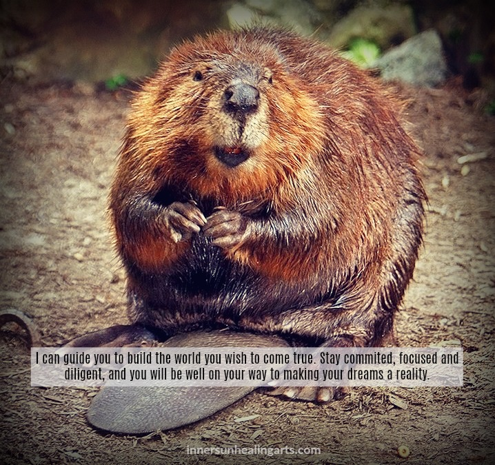 InnerSunMeme-BeaverMedicine-Feb2018.jpg
