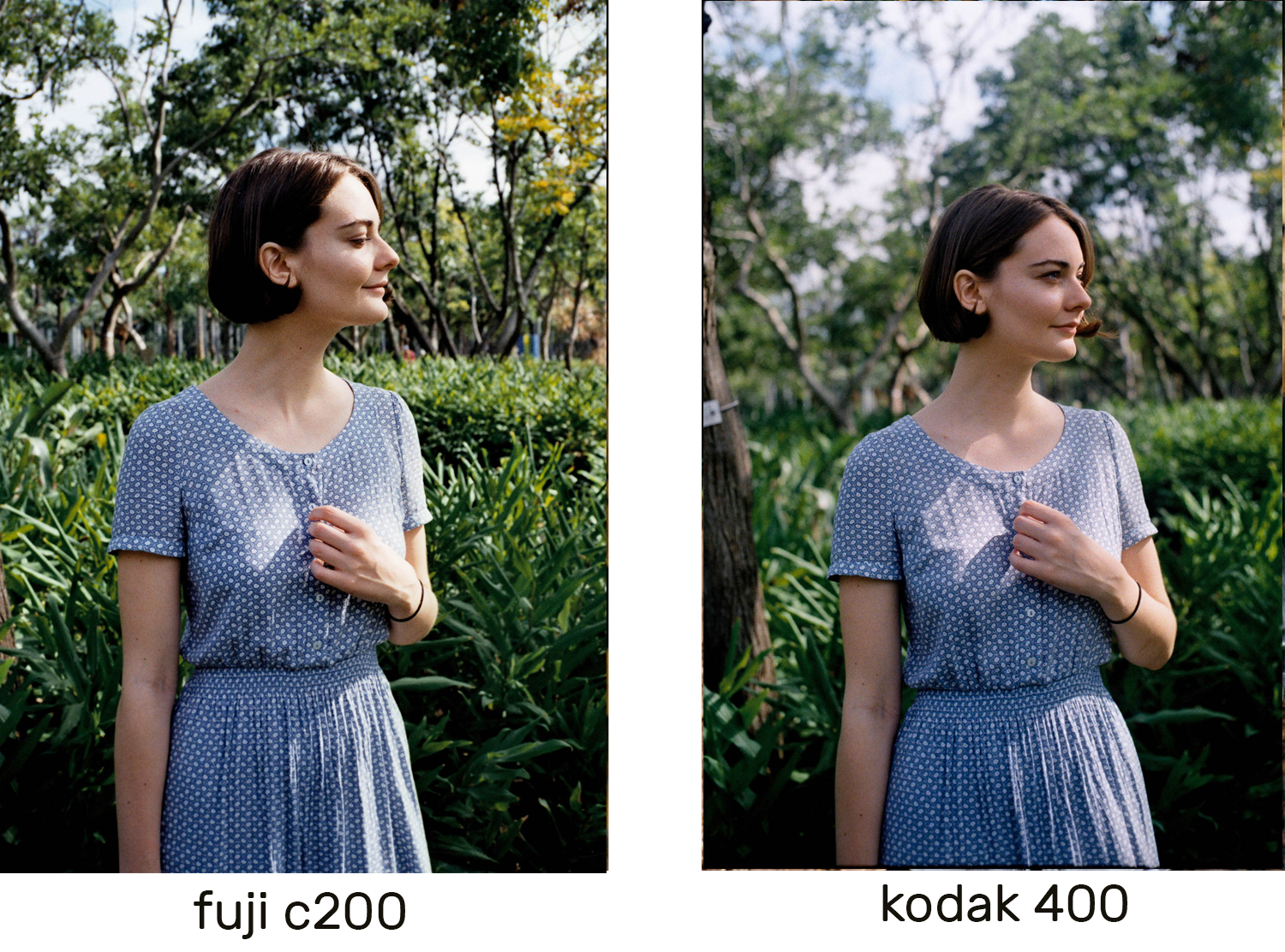 The Contax (Fuji example) tends to have a much higher depth of field at f2.8 than the Zeiss has (Kodak)