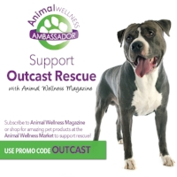 """25% of the proceeds from all Animal Wellness Magazine subscriptions and purchases from their store come back to our dogs when the code """"OUTCAST"""" is used. Just click the photo"""