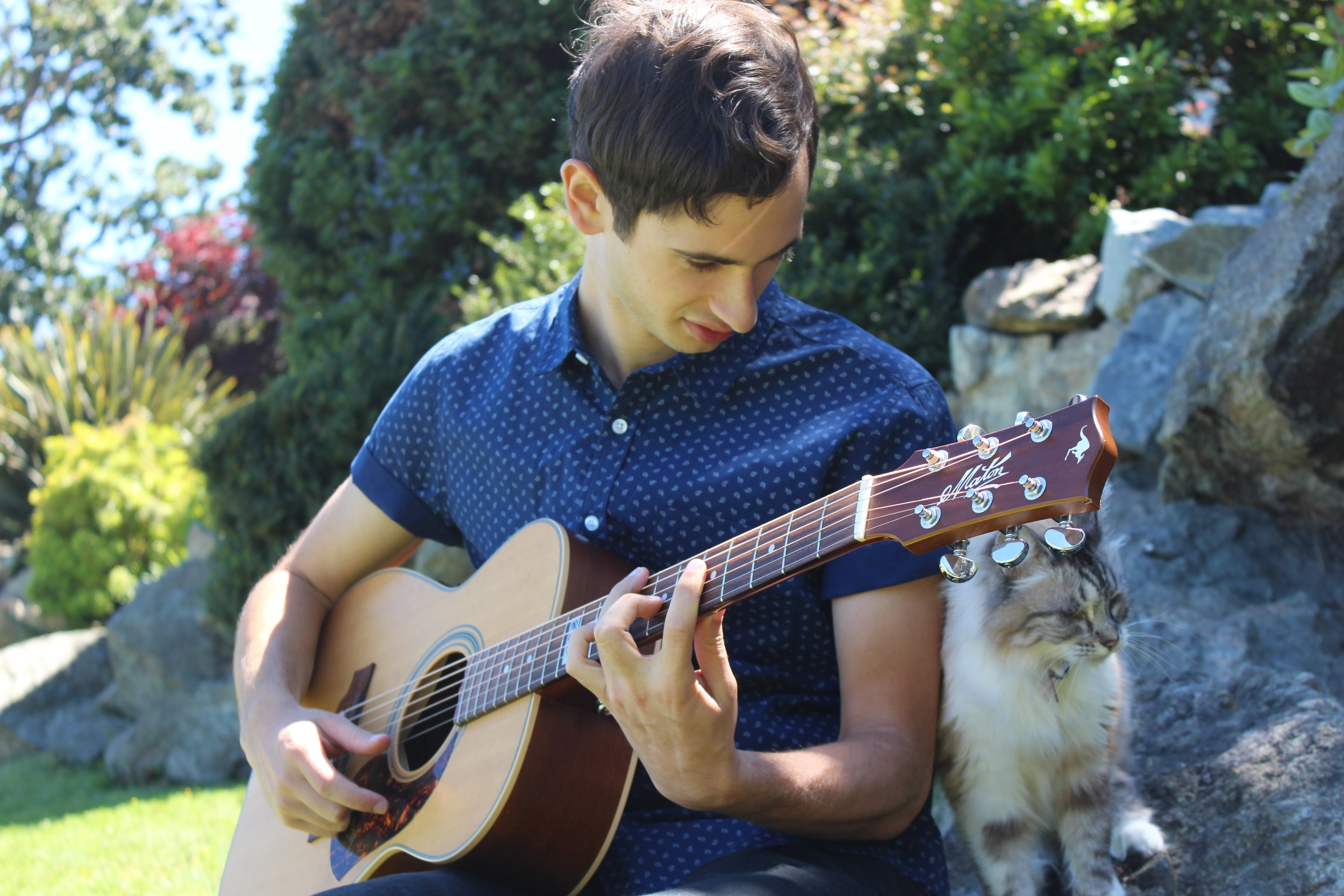 Charlie teaches a cat to name the chord he is playing, without her peeking.