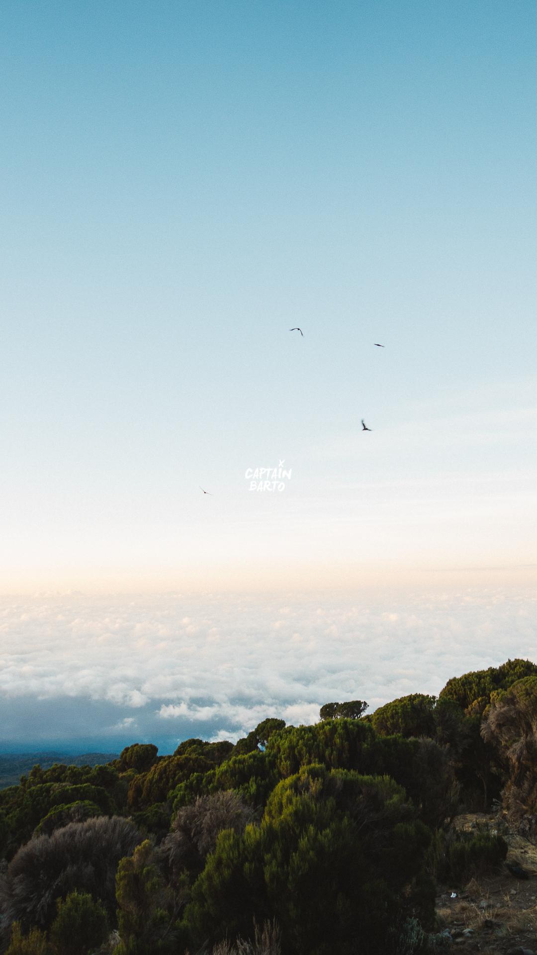 captainbarto-blog-wallpaper-climbing-mtkilimanjaro-110817-8.jpg