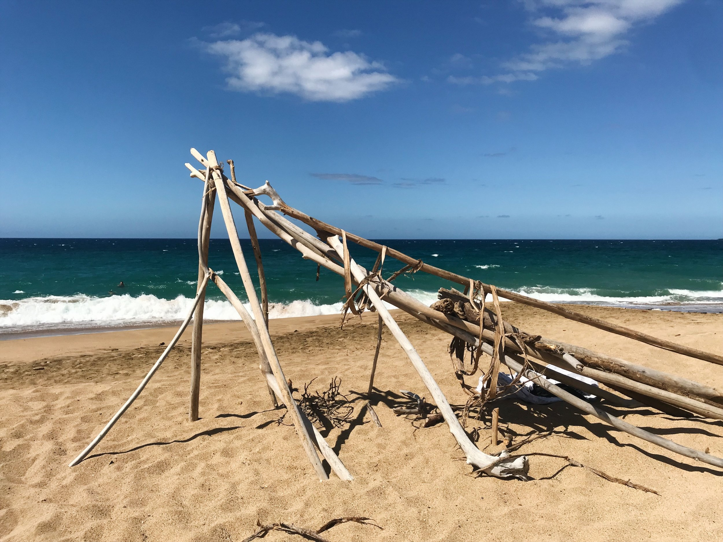 driftwood structure maui travel photography wall art nature inspired.JPG