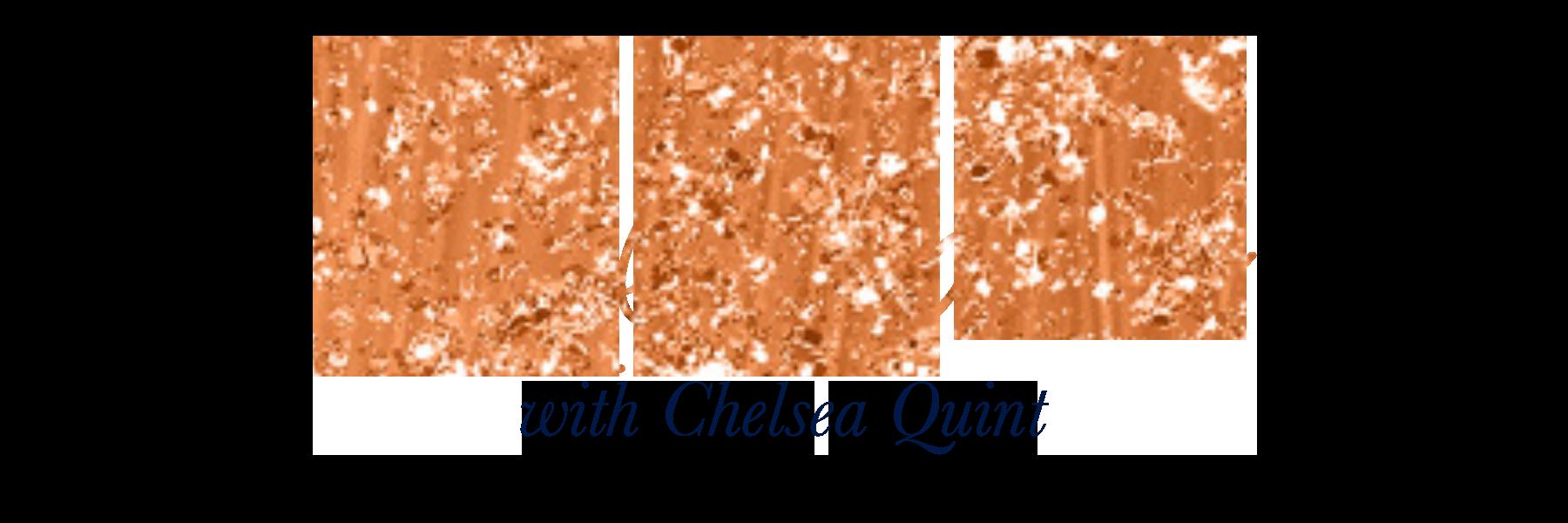 business basics logo.png
