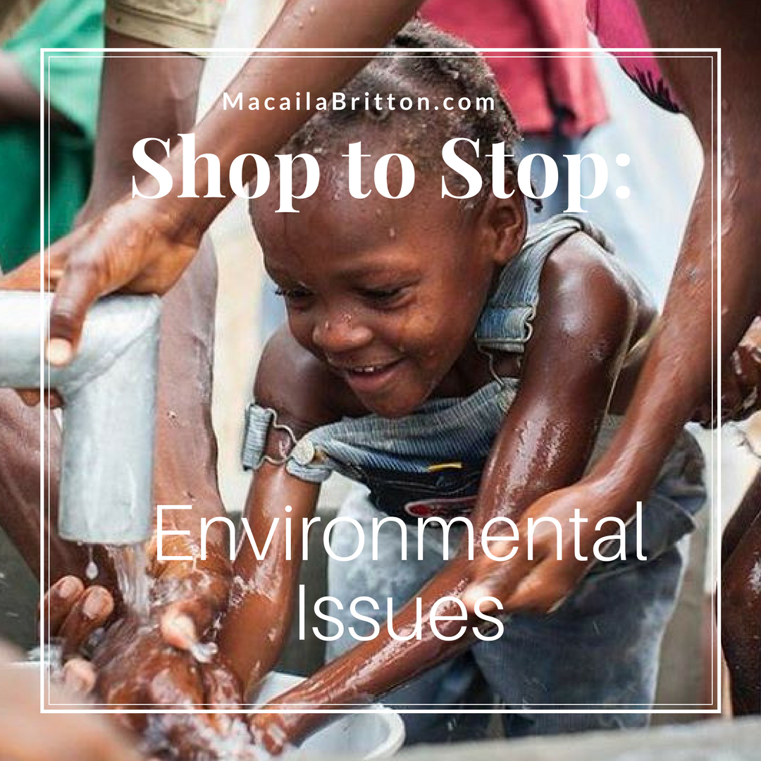 solve-environmental-issues-macaila-britton