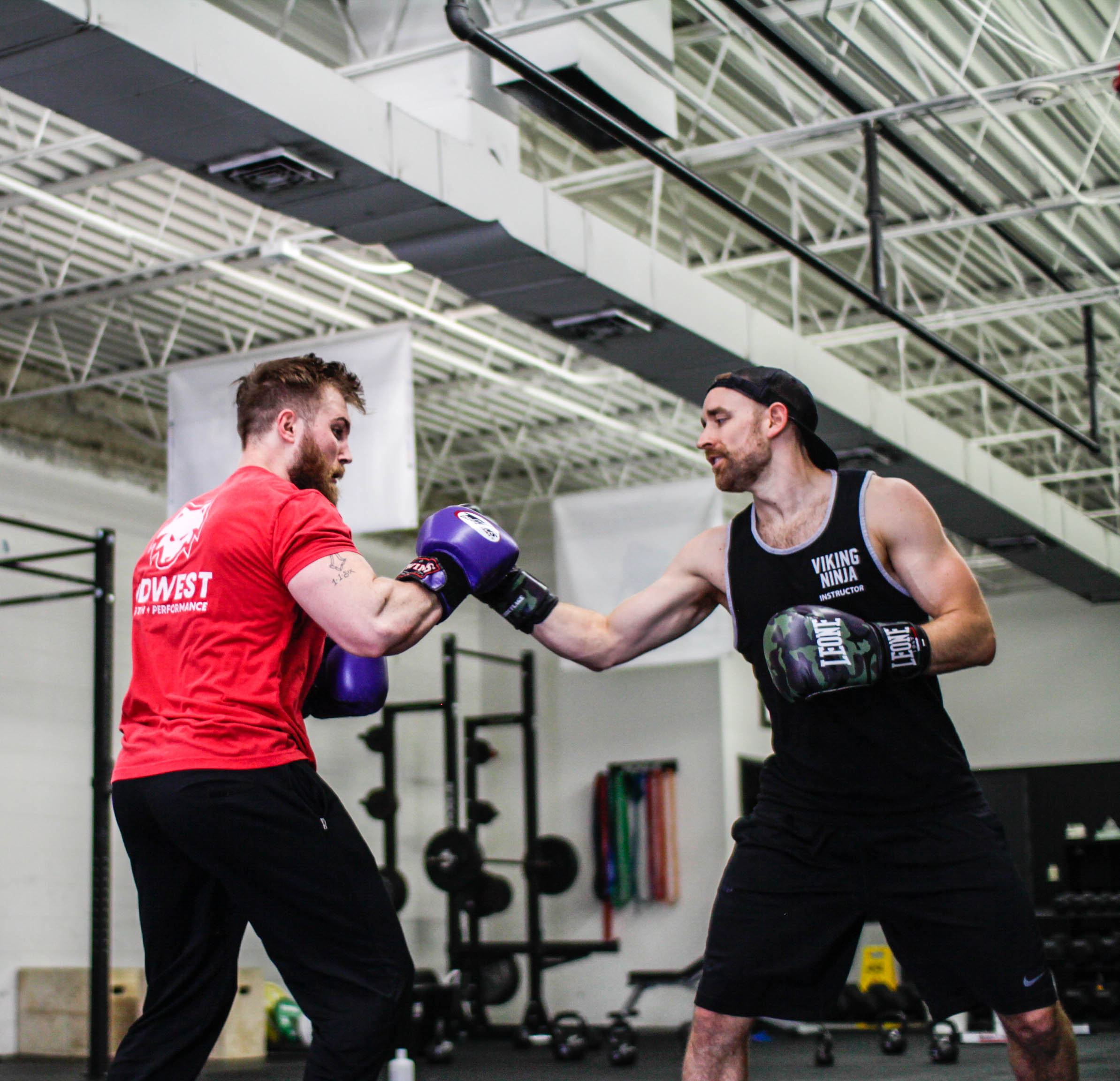 Affordable Online Personal Training and Coaching