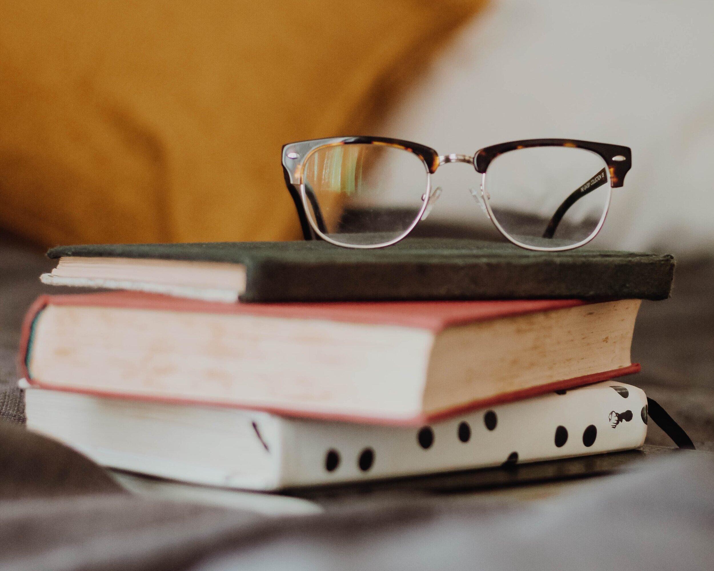 Chicago Book Blog Post