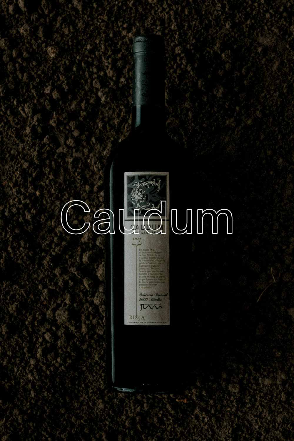 """Caudum has true roots in the earth, a """"pie franco"""" that makes the fruit 100% aligned with the soil. A coherence that is felt in every sip of this wine. A wine to enjoy with those who make you think about the important things in life. - APPELLATION RIOJA ALTA"""