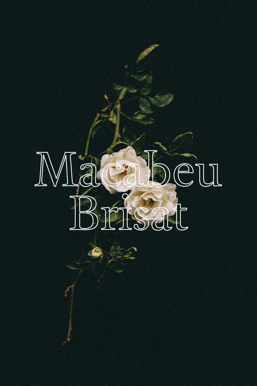 Metamorphika Macabeu Brisat - MACABEU