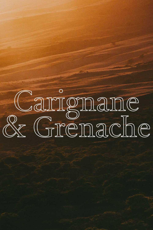 Metamorfic Carignane & Grenache - CARIGNEN GRENACHE