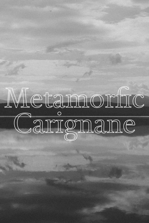 Metamorfic Carignane  - CARIGNEN