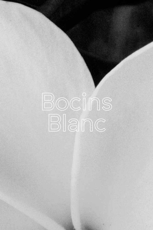 Bocins Blanc - 70% VIOGNIER 30% WHITE GRENACHE
