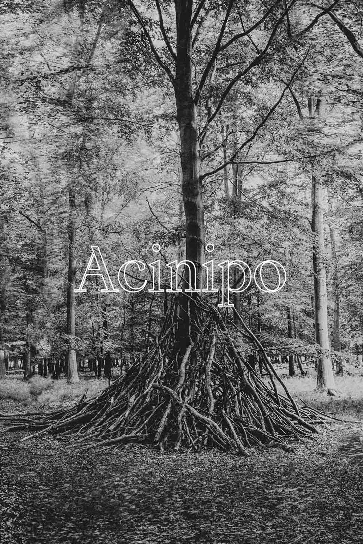 Acinipo H  - 100% LEMBERGER