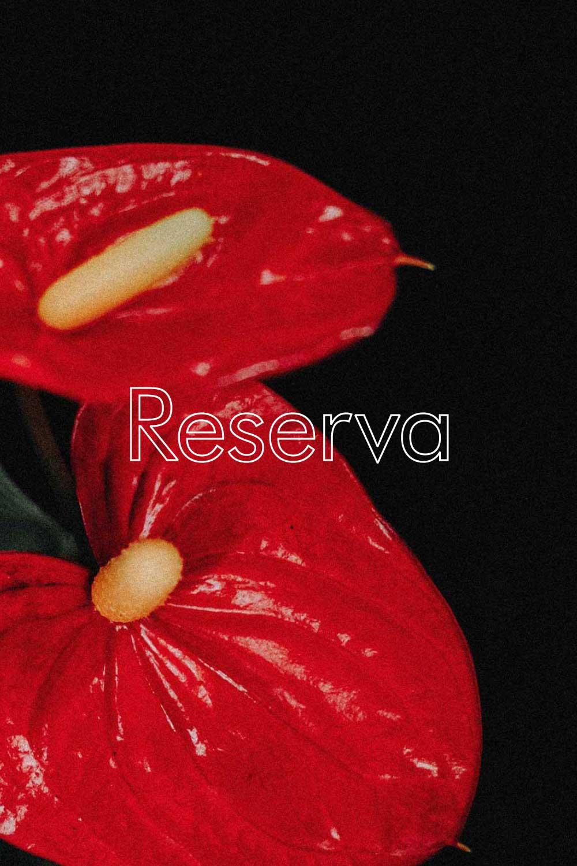 Reserva  - 100% TEMPRANILLO (TINTA DE TORO)