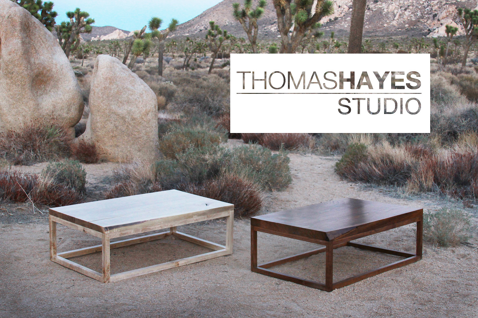 EDITOR AT LARGE   Announcing the formal launch of Thomas Hayes Studio