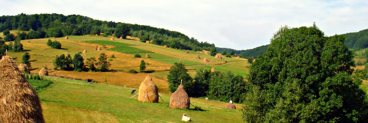 Apuseni Natural Park that can be reached in less than 2 hours from Cluj