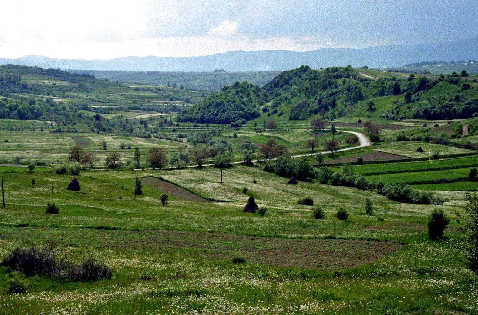 Mara Valley, Maramures (copyright:  creative commons )