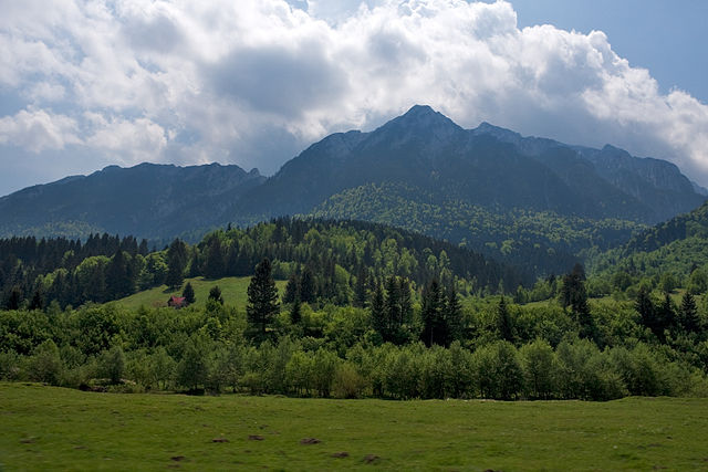 The_ridge_of_the_Piatra_Craiului_Mountains_from_the_road.jpg