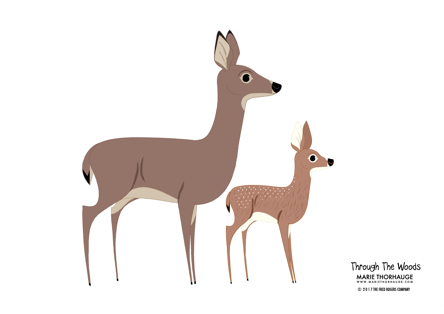 2012_Marie-Thorhauge_TTW_White-Tailed-Deer.png