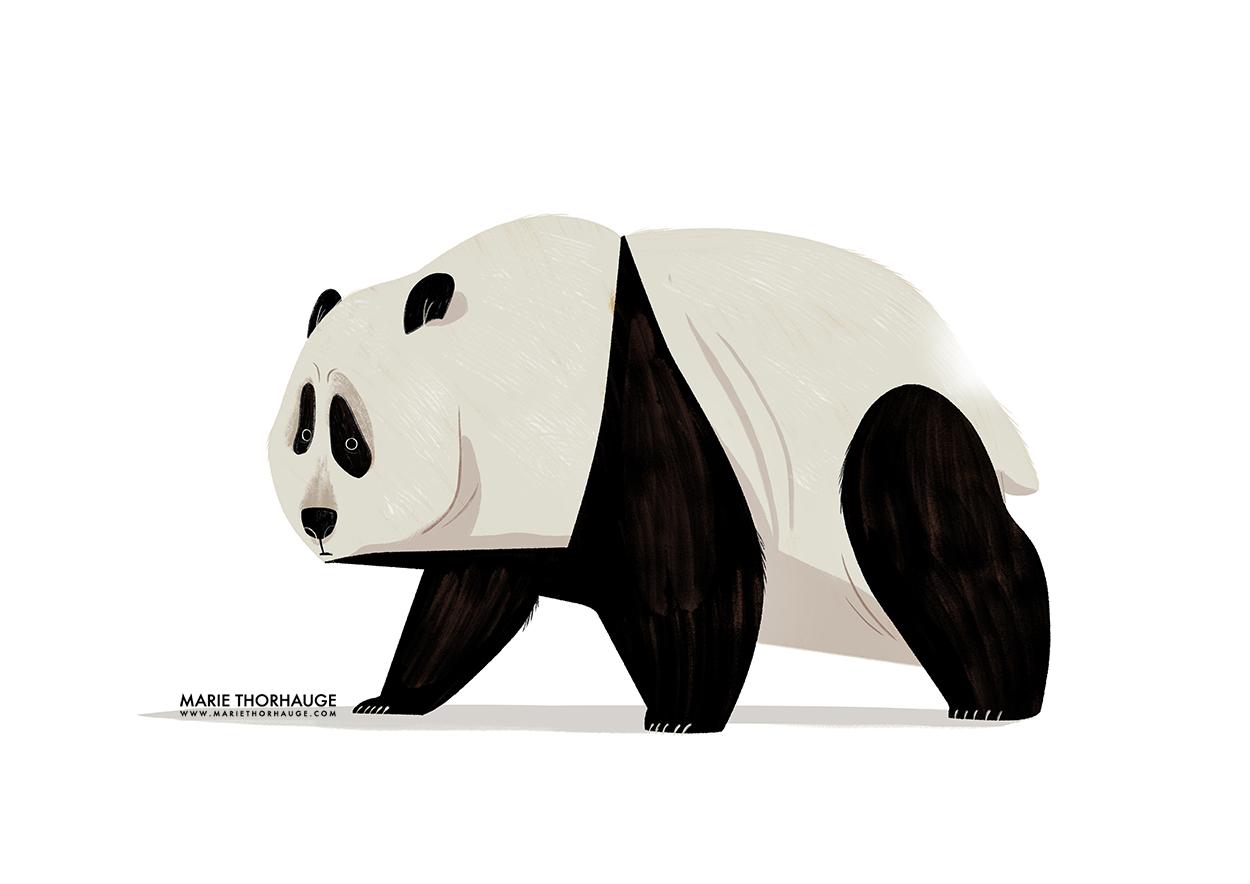 A3_Marie-Thorhauge_Panda-01_reboot_sml.jpg
