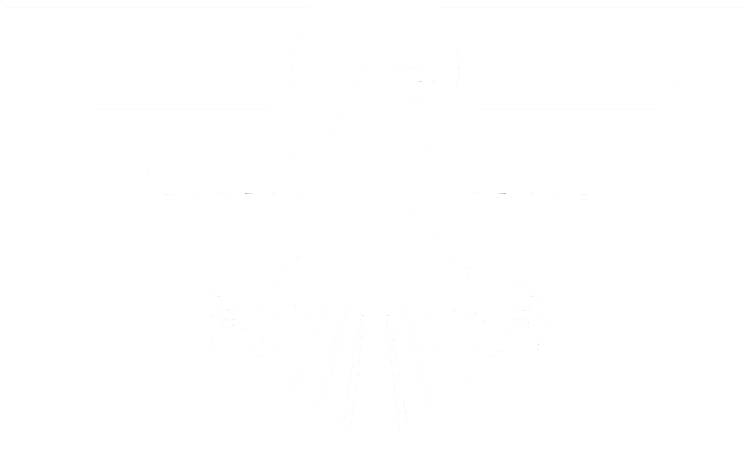 White eagle_PNG1232.png