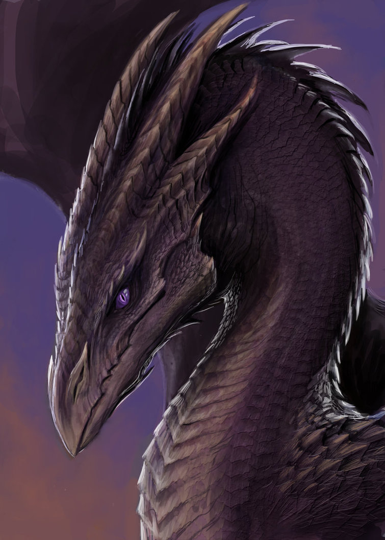 Purple Dragon by TatianaMakeeva.jpg