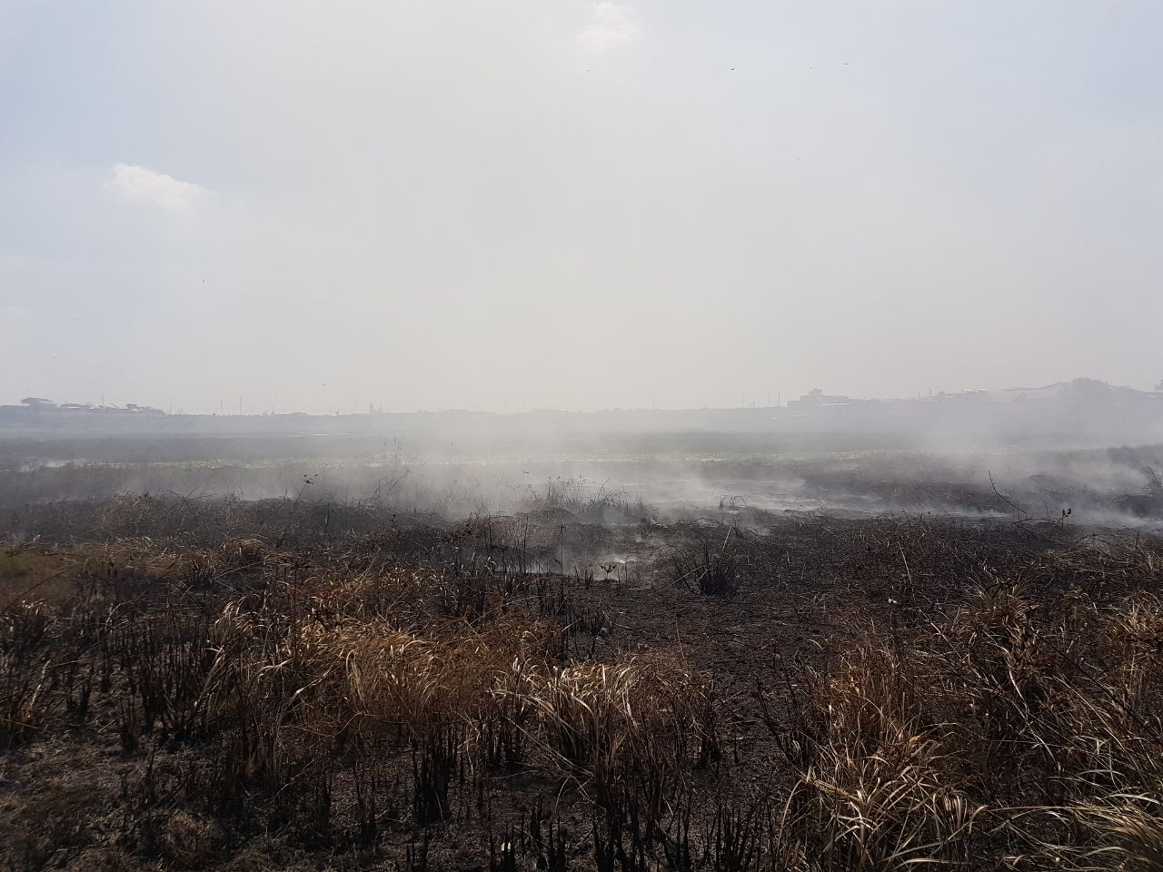 Bush fire on the lake...