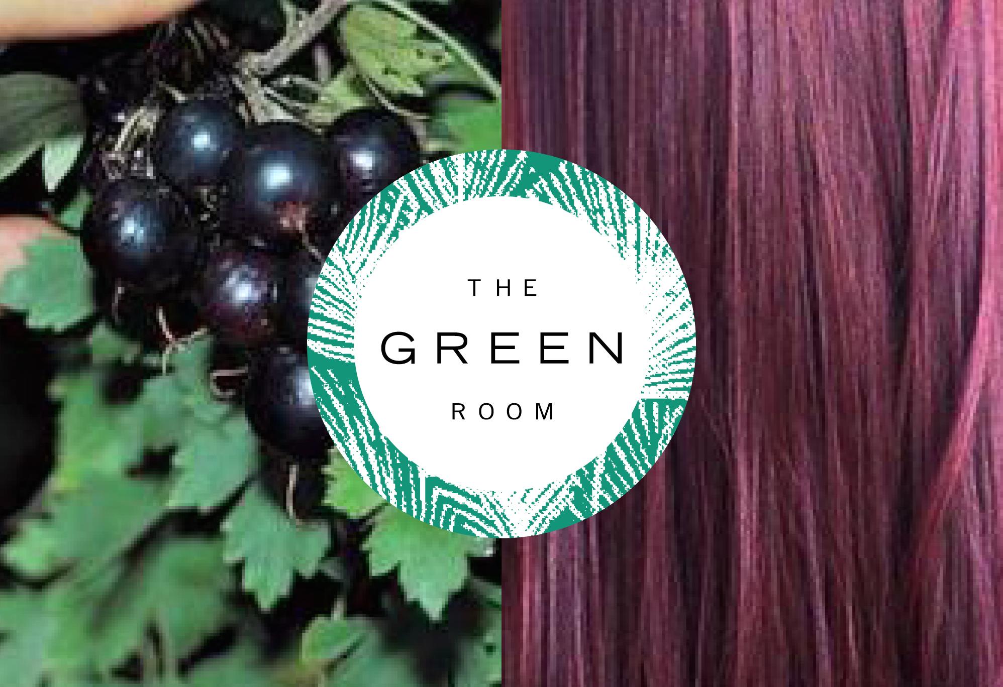 The Green Room Gardiner NY Organic Hair