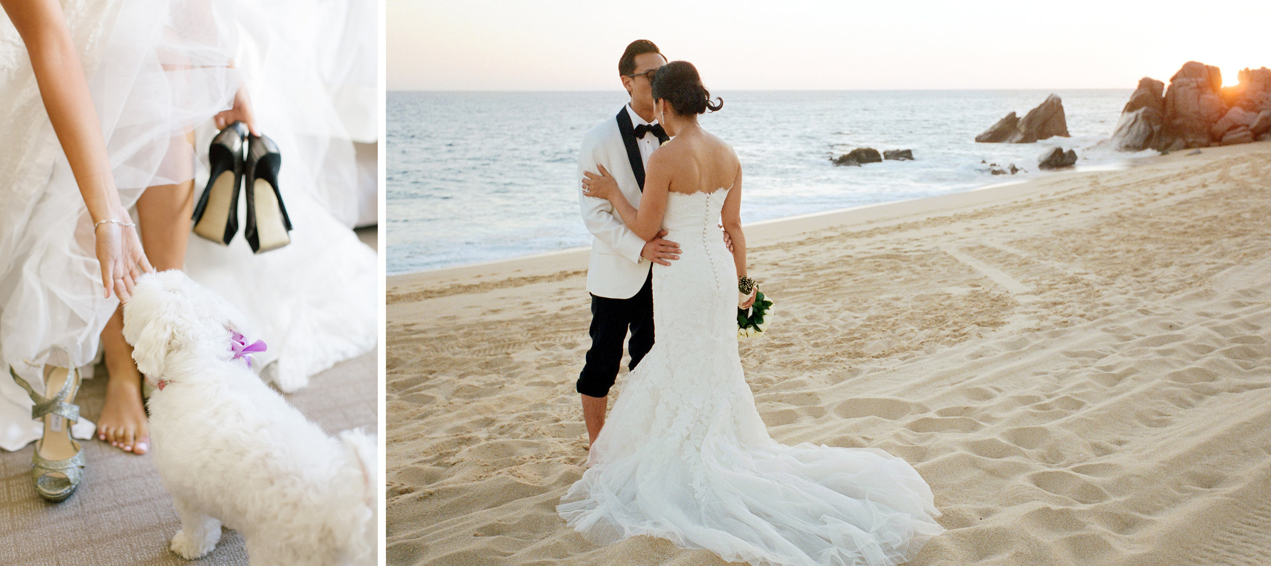 The bride gets dressed and puts on her shoes while her dog visits. Bride and groom on beach in Cabo at sunset.