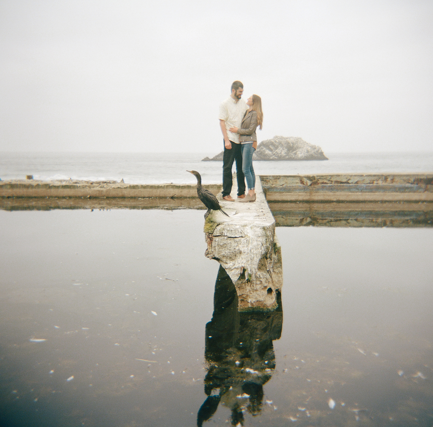 Sharing space with a sea bird at this Sutro Baths engagement session.