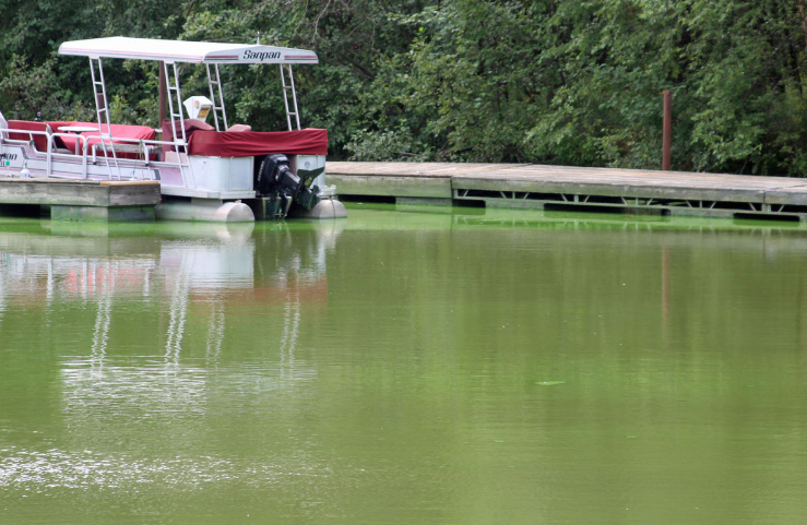In 2010, the state was among the first in the nation to adopt specific, measurable standards for how much phosphorous could be released into state waters.