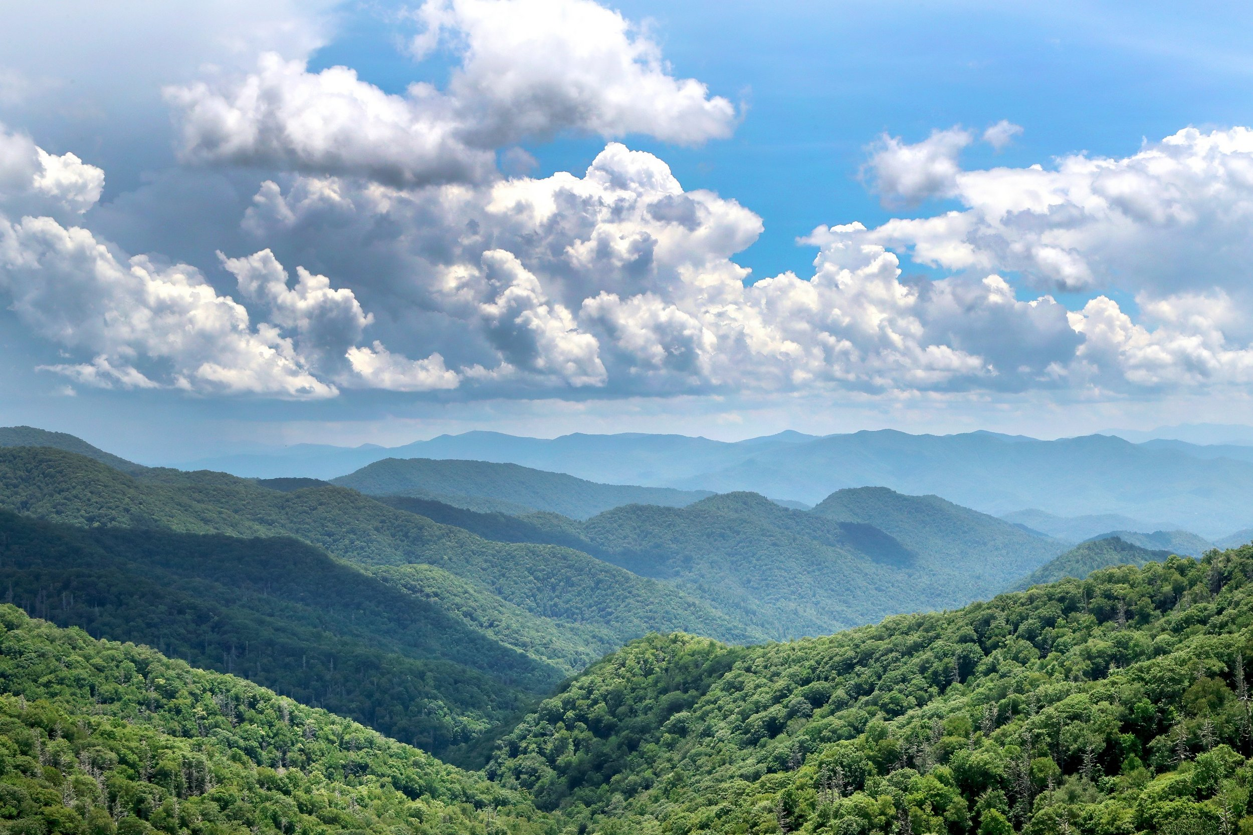 Smoky Mountains - Clingmans Dome 07-11-16 07.jpg