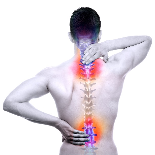 smaller spine pic.jpg