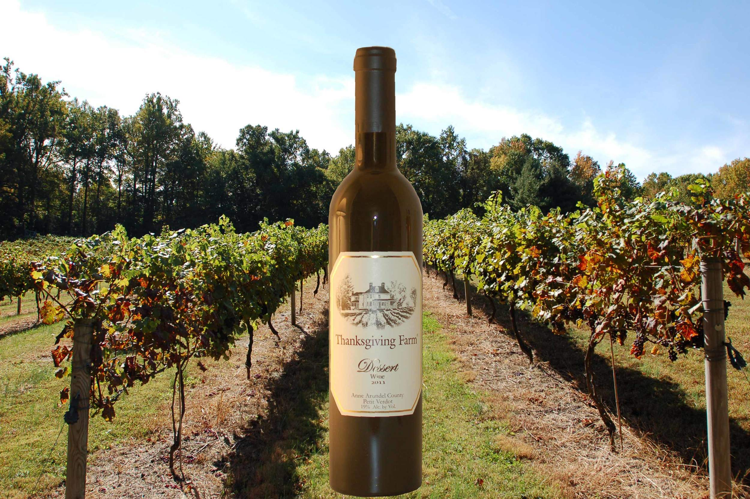 DW Bottle and Vineyard-04.jpg