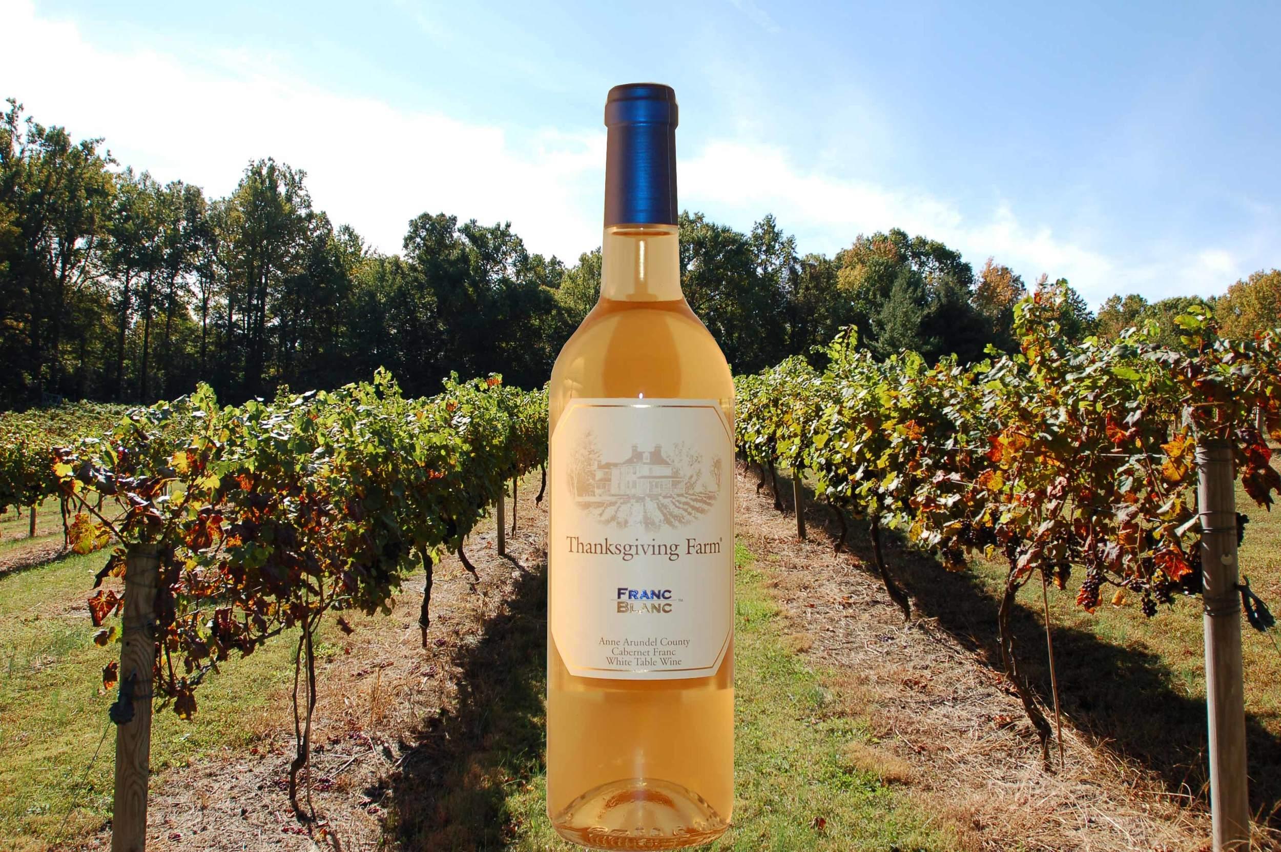 FB Bottle and Vineyard-01.jpg