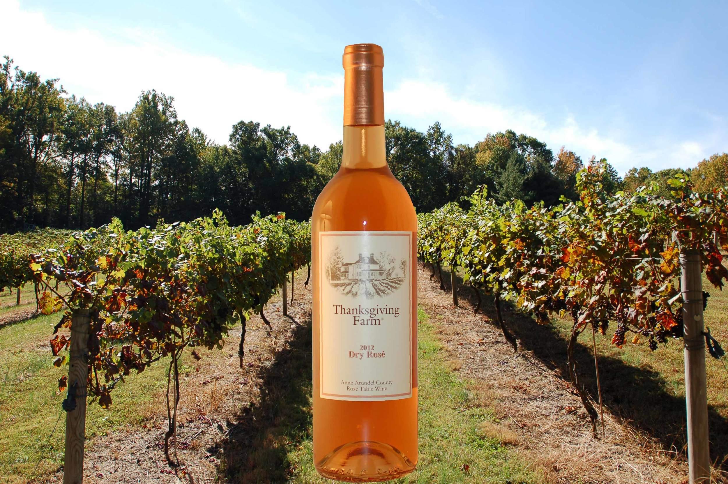 DR Bottle and Vineyard-03.jpg
