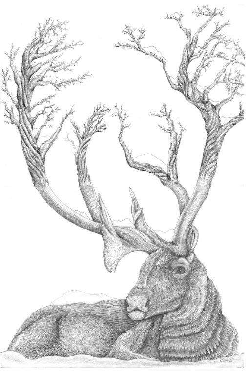 Caribou Tree Antlers.jpg