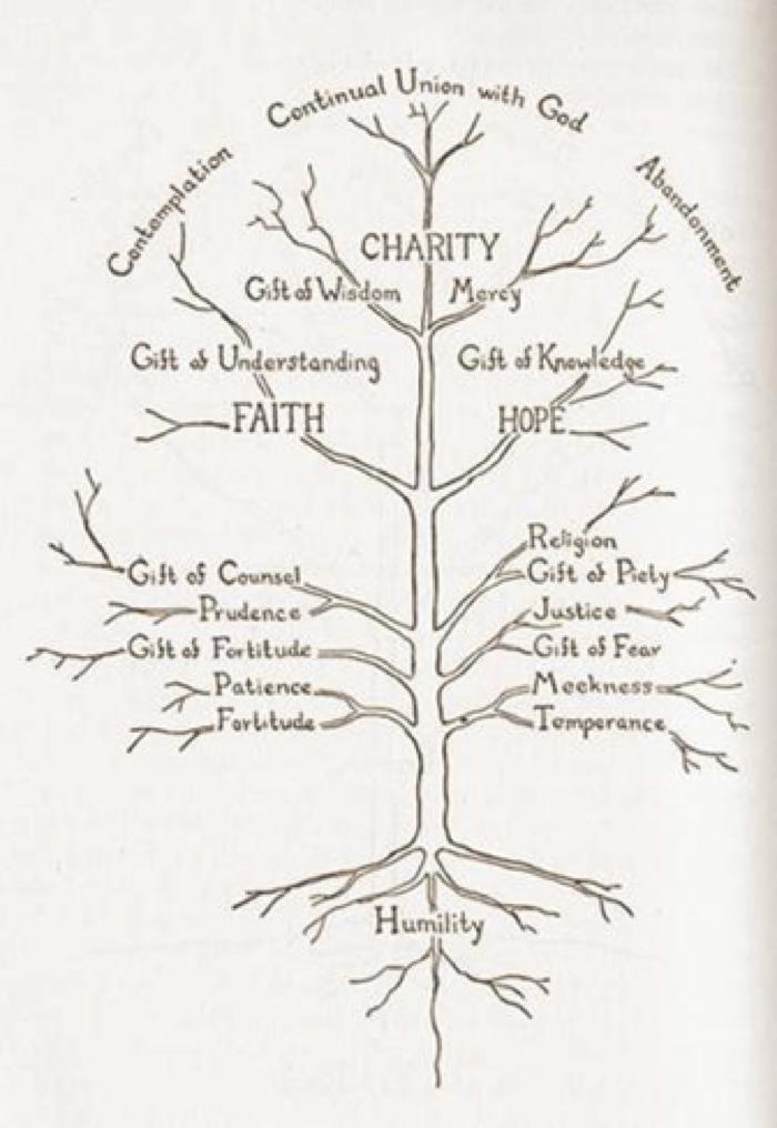 Anatomy of Virtue.jpg