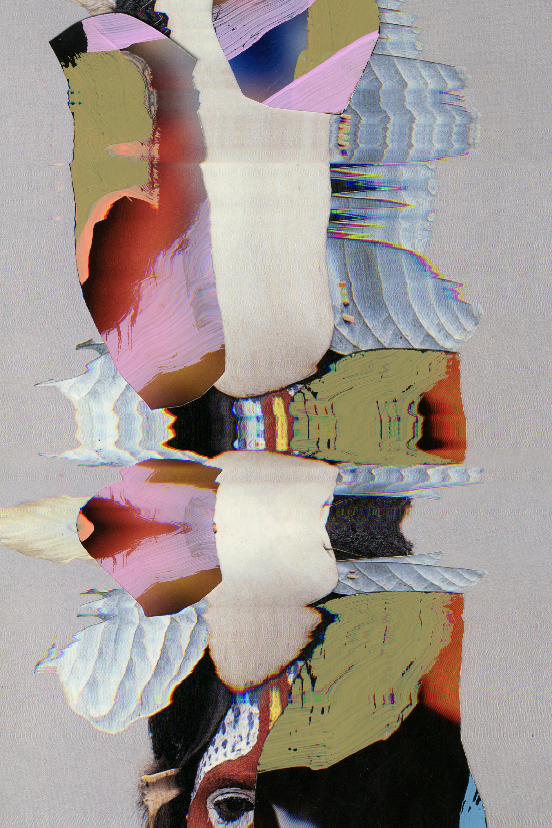 3-PhenotypeOriginal58.jpg